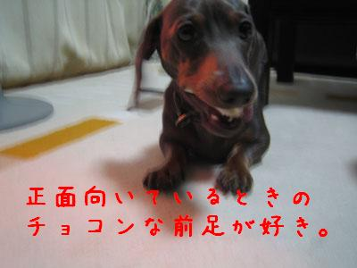 IMG_17043333.jpg