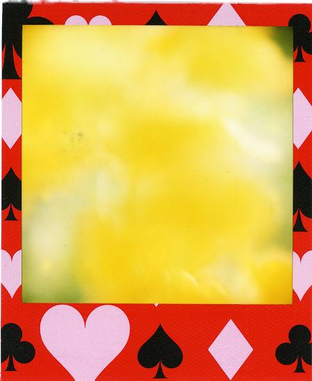 p1006_002s.jpg
