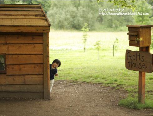 poohhouse3