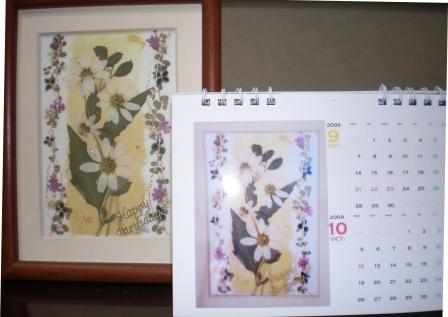 2009 ドジミ 誕生日プレゼント用 カレンダー 004