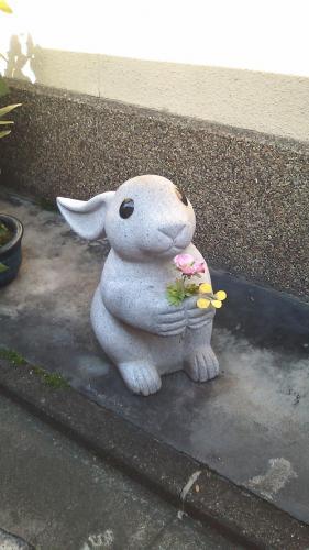 お花こうておくれやす