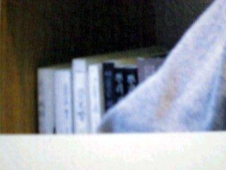 ソ・ドヨン自宅書斎左から2列目上から4段目
