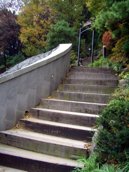3チェハが上がっていく階段