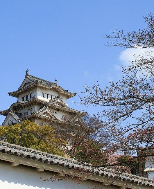 01イチゲンさまの姫路城141-530
