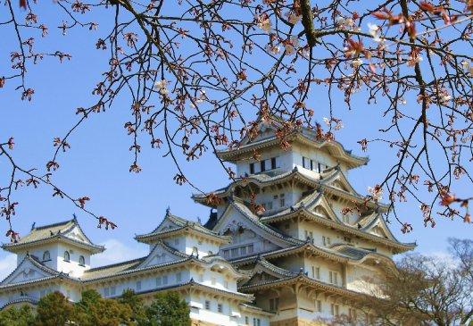 03イチゲンさまの姫路城155-530