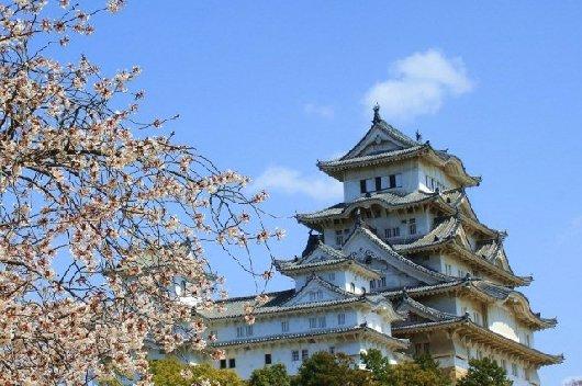 04イチゲンさまの姫路城164-530