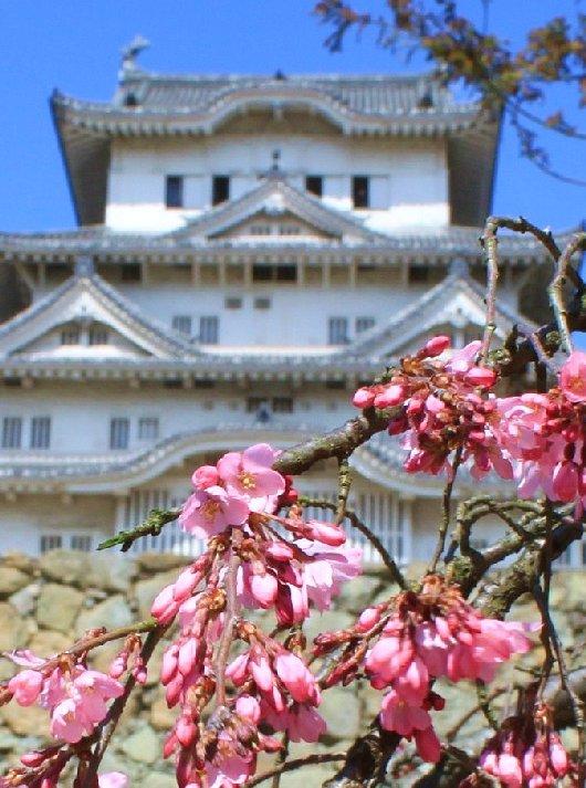 13イチゲンさまの姫路城201-530