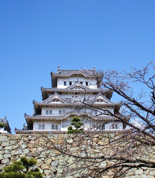 14イチゲンさまの姫路城207-530