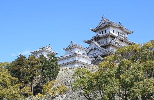 20イチゲンさまの姫路城229-530