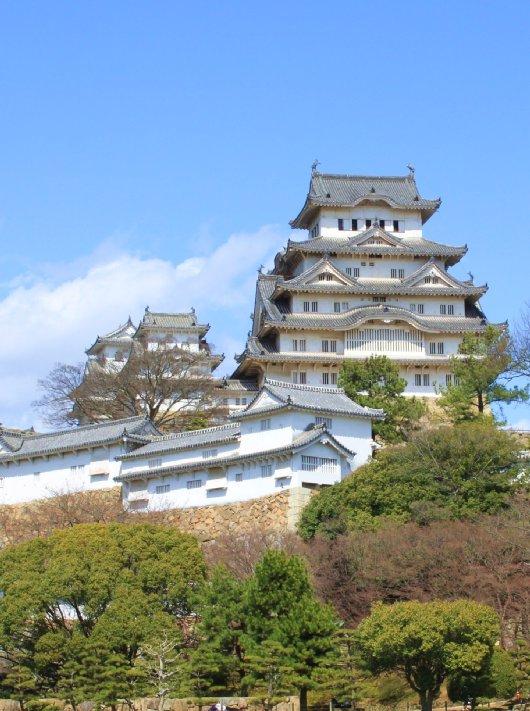 21イチゲンさまの姫路城237-530