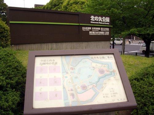 北の丸公園へお散歩4