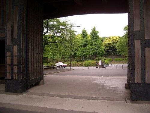 北の丸公園へお散歩9