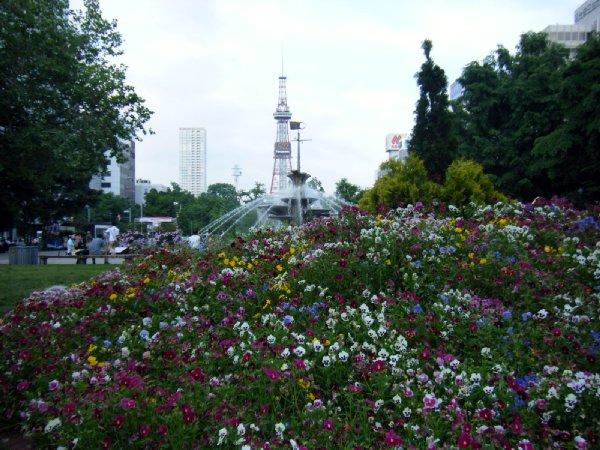 青空さま北海道旅行4