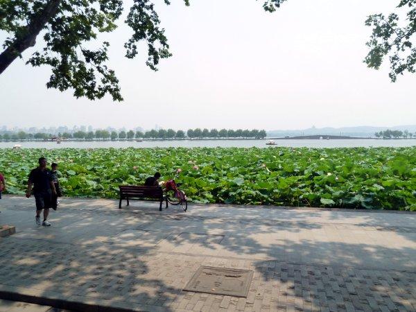 杭州15西湖5