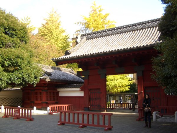 割り箸王子at東大赤門1