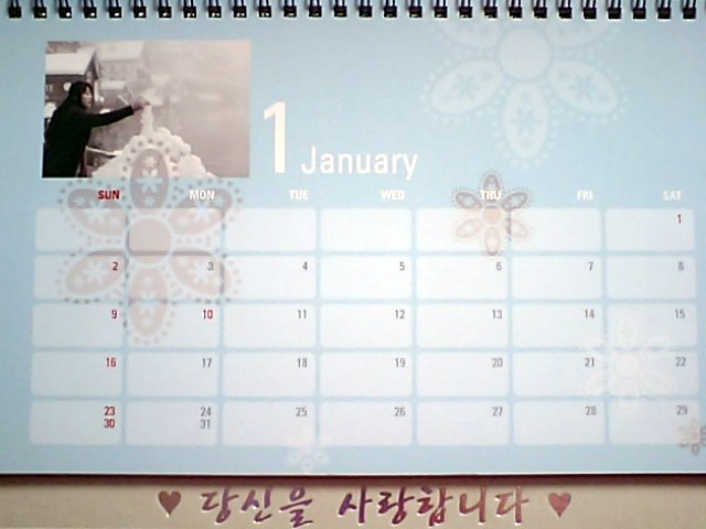 春のワルツカレンダー2011-1月裏