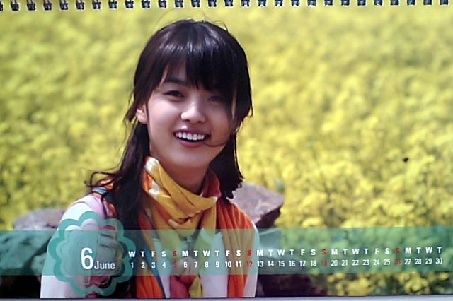春のワルツカレンダー2011-6月