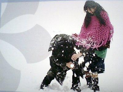 春のワルツカレンダー2011-12月裏