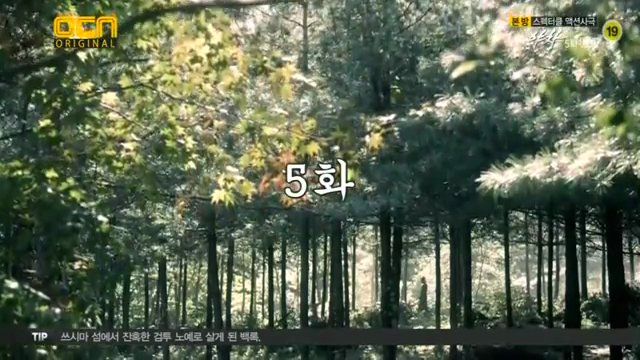 夜叉5話(1)