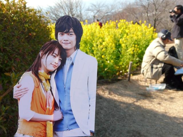 菜の花畑2011-byHirokonさま3