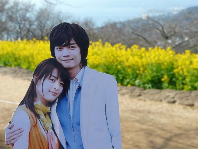 菜の花畑2011-byHirokonさま4