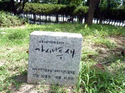 ソウル旅行記3チングBさま02
