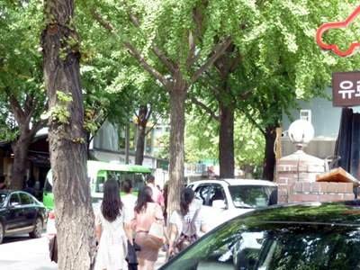 ソウル旅行記3チングBさま15