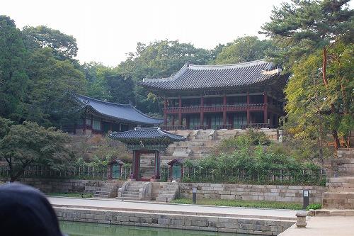 ⑦昌徳宮2