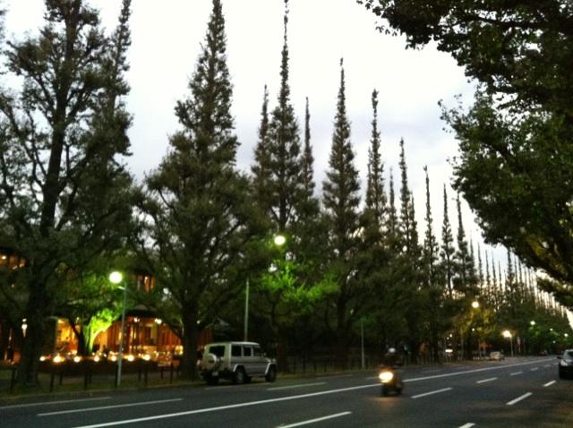 青山20111006-09