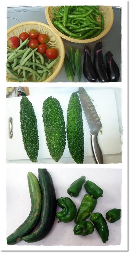 2011・8・20・夏野菜