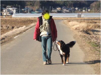 2006_01050157.jpg