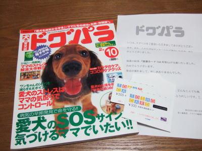 2006_04130093.jpg