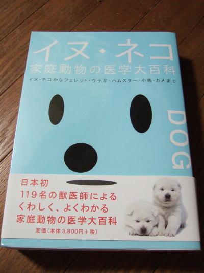 2006_05310019.jpg