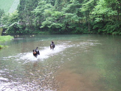 2006_06120050.jpg