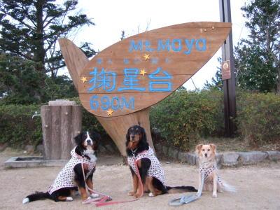 2006_12160096.jpg