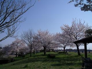 土手の公園