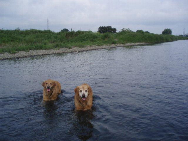 多摩川 036
