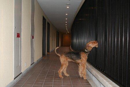 013外廊下