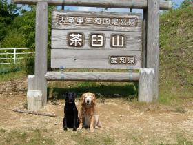 今年もやってきた茶臼山高原