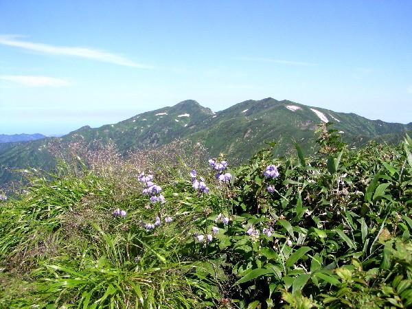 P8150073.JPG大日岳にて