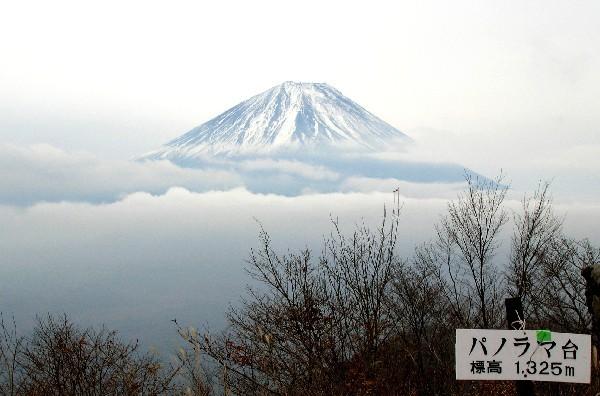 パノラマ台の富士山