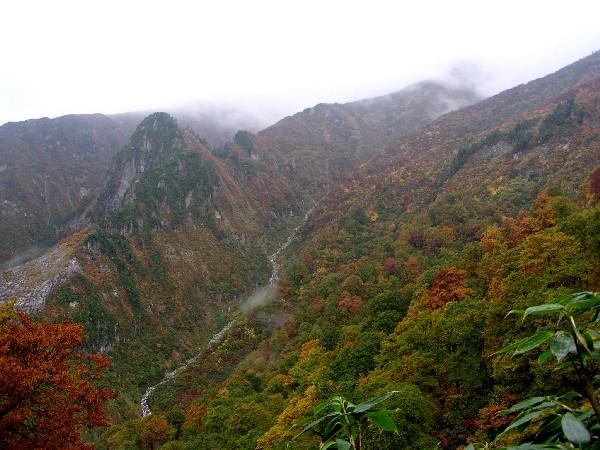 PA140073.JPG登山道にて