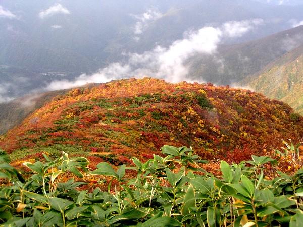 PA140075.JPG登山道2