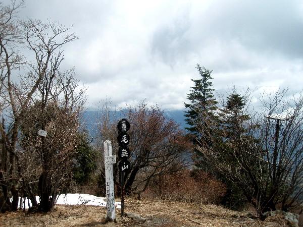 P4190048.JPG山頂.jpg