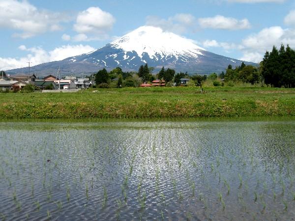 P5040009.JPG富士山.jpg