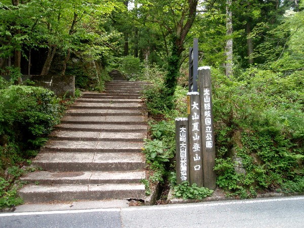 P5090029.JPG登山道.jpg