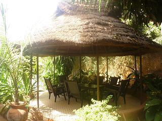 bobo 2011-01-23 010