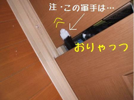 神奈川県Oみるく081222_2a