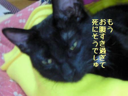 クローネ_090102_7a