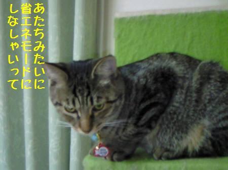 みなみ_090102_1a